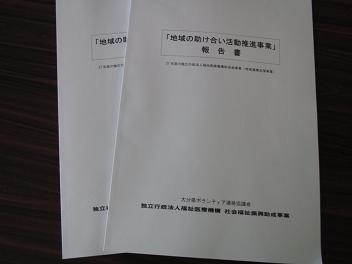 28地域の助け合い活動推進事業報告書.jpg